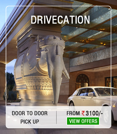 Drivecation