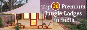 Top 20 Jungle Lodges