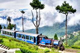 Toy Train in Darjeeling