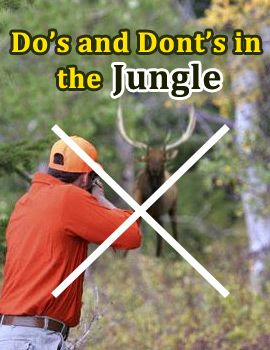 Dos and Donts Jungle