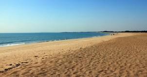 Goptimata beach diu