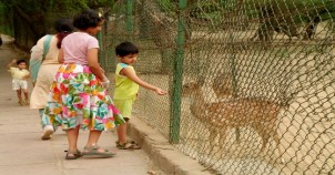 Deer Park in Delhi