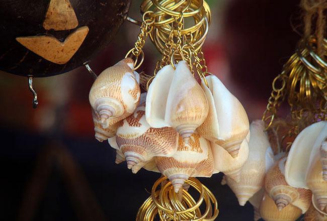 Coconut seashell craft