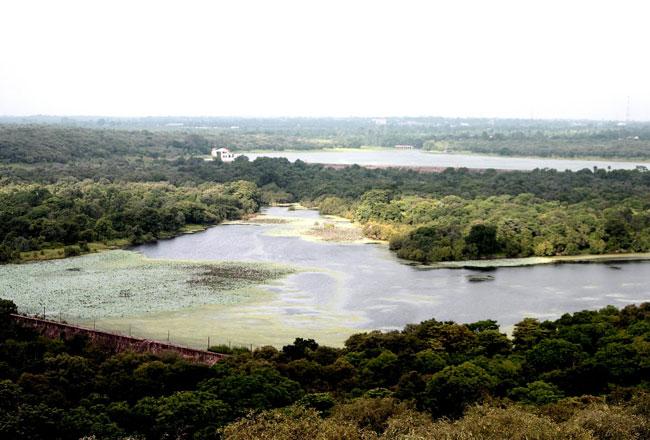 Madhav national park chandpata lake