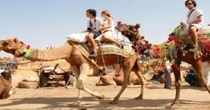Camel safari nagaur