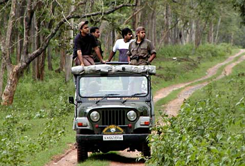 bandipur-safari-lodge-by-jungle-lodges-with-jeep