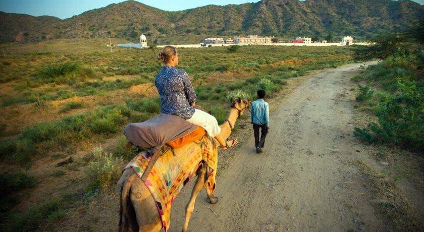 camel-safari-near-palace