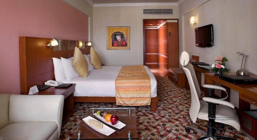 Suite room in The Suryaa, New Delhi
