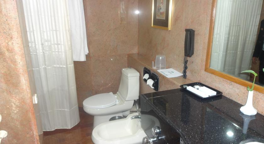 Bathroom in Hotel Gem Park Ooty
