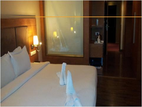 Suite Room in Hotel Cambay Sapphire Neemrana
