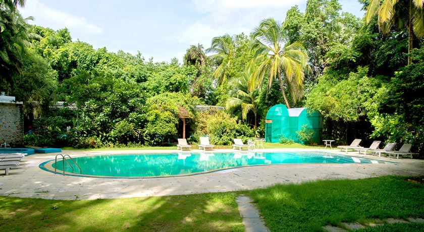 swimming-pool-garden
