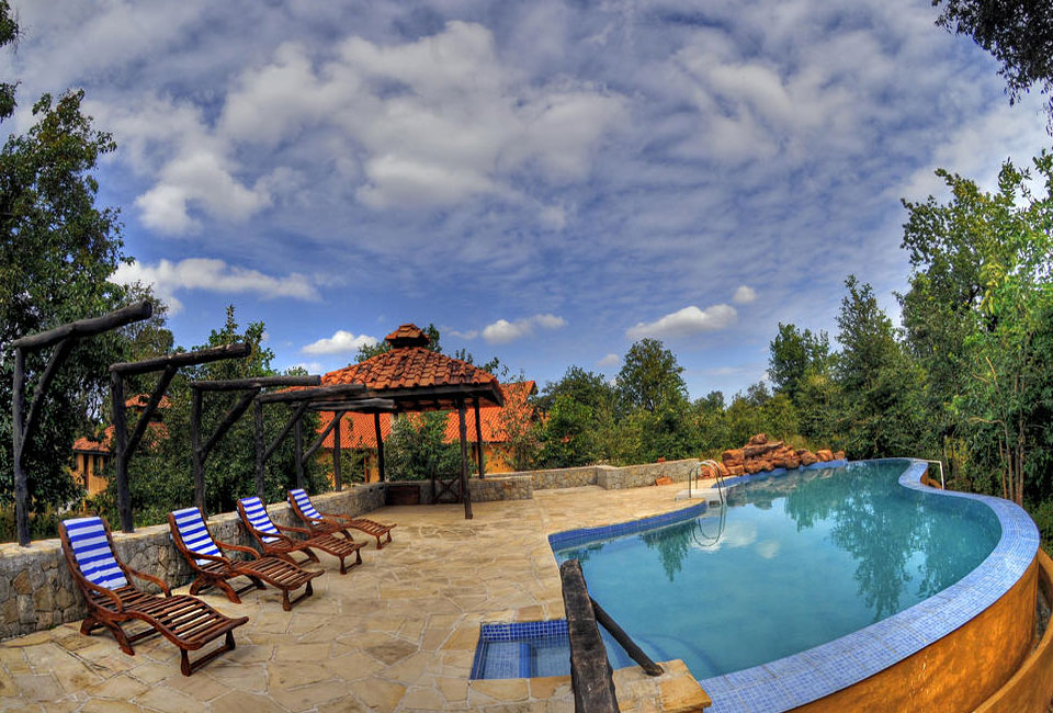 kanha-earth-lodge-pool-view