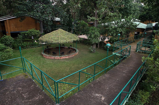 white-tiger-forest-lodge-1