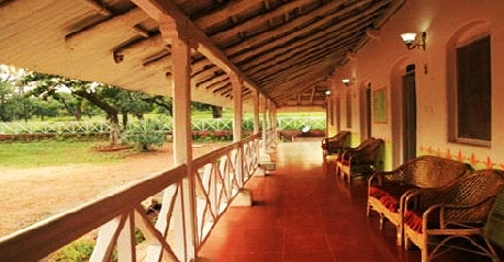 Room in Woodland Resort Pachmarhi