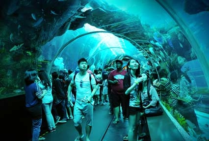 Aquarium in singpore