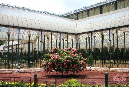 Lal Bagh Botanical garden in Bengaluru