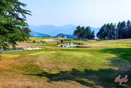Golf skills in Naldehra