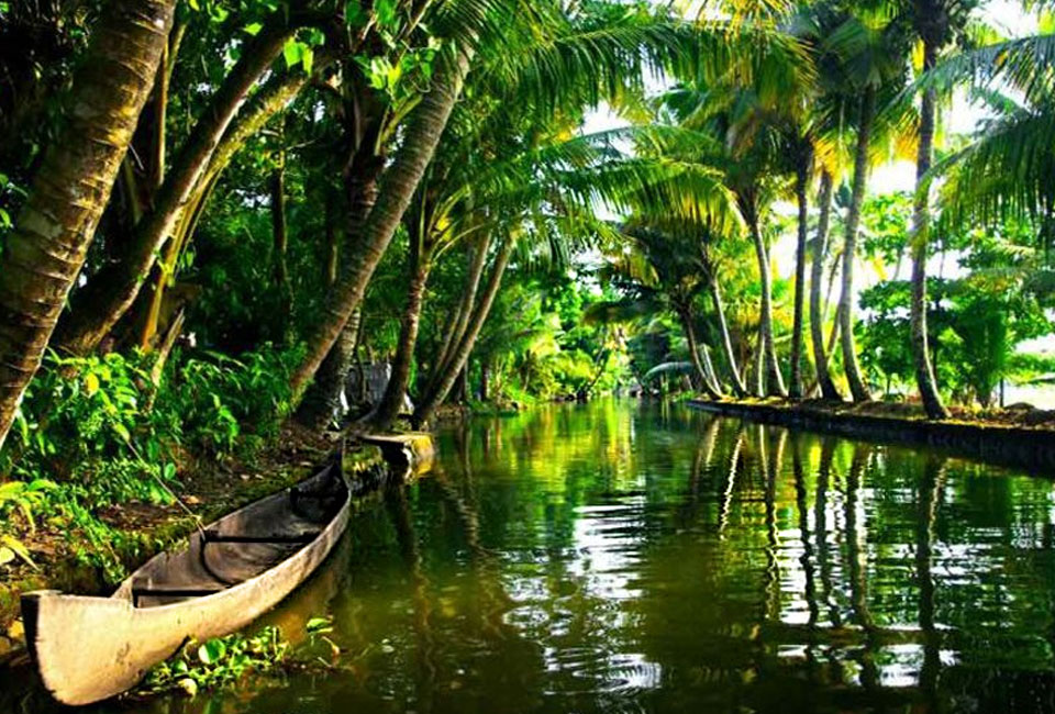 munnar-and-alleppey-tour-backwater-silent