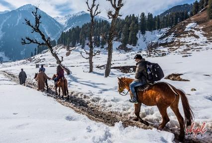 Thejiwas Glacier Sonamarg