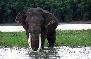 Periyar Wildlife Sanctury