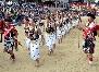 kohima hornbill festival