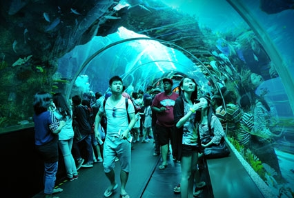 underwater aquarium in singapore
