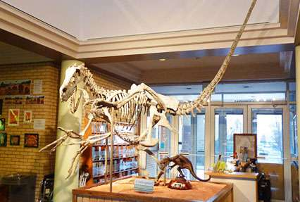 USU Eastern Prehistoric Museum