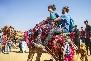 Camel Safari Bikner