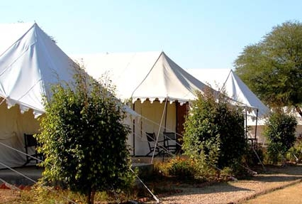 sariska national park camping