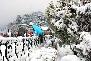 Shimla In Winters