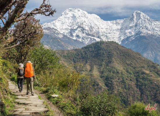 Machapucchare Base Camp
