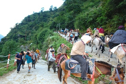 Pilgrims Moving towards Kedarnath Temple