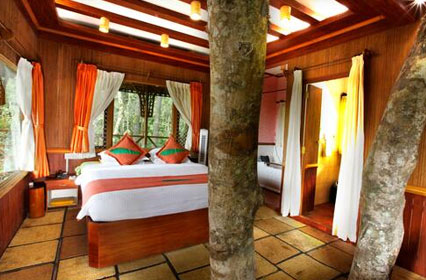 Vythiri-treehouse interior