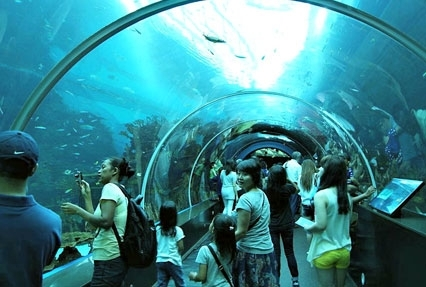 singapore underwater aquarium