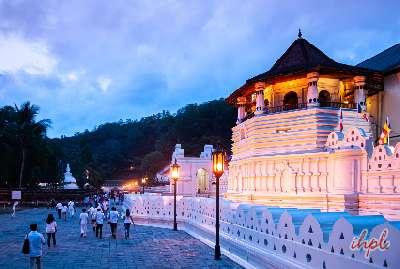 6 Days Wonders of Sri Lanka Tour
