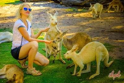Trip to Australia from India