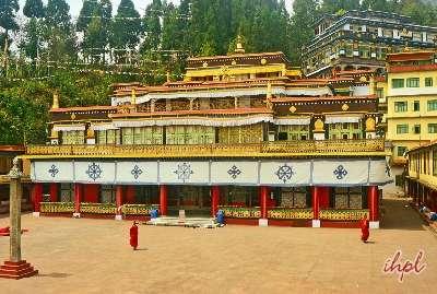 Darjeeling Honeymoon