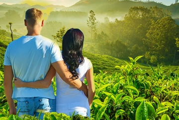 Kerala Honeymoon Package Tour