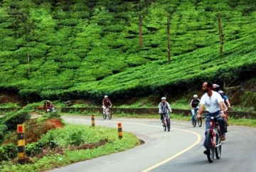 Offbeat  Kerala Tour