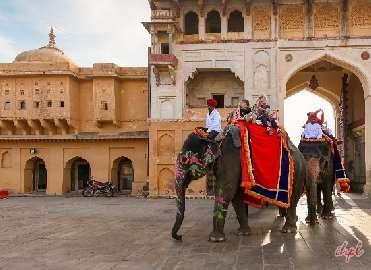 7 Days Delhi Agra Jaipur Forts & Palaces Tour