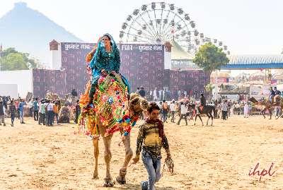 Pushkar Fair Tour,Rajasthan