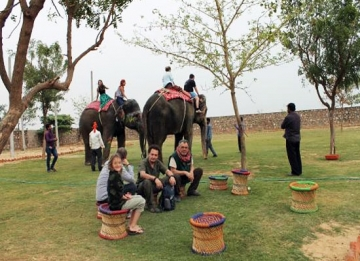 Visit to Elephant Farm