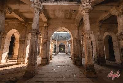 Wildlife and Heritage of Gujarat