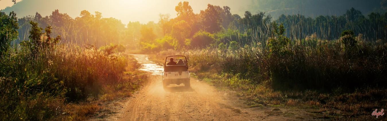 Safari Madhya Pradesh