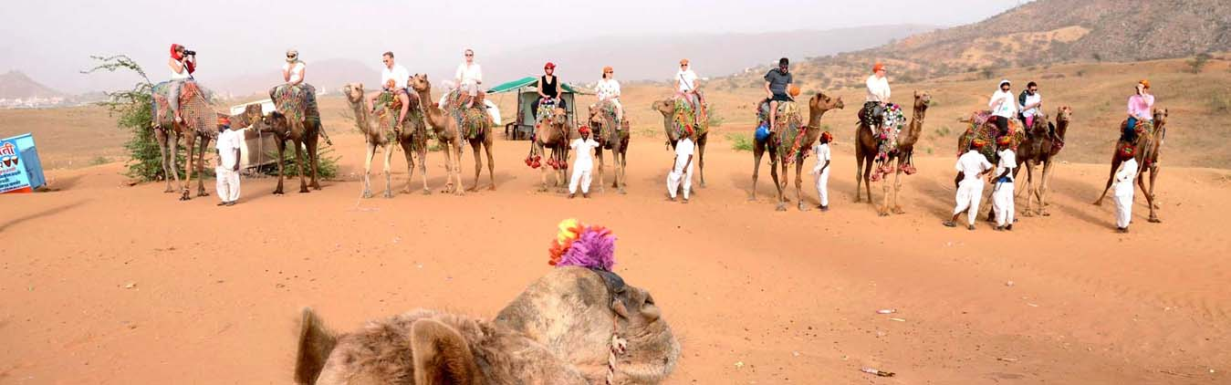 Pushkar Fair Tour,Rajasthan