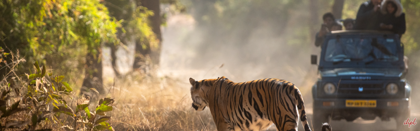 Tourist Attractions in Kanha