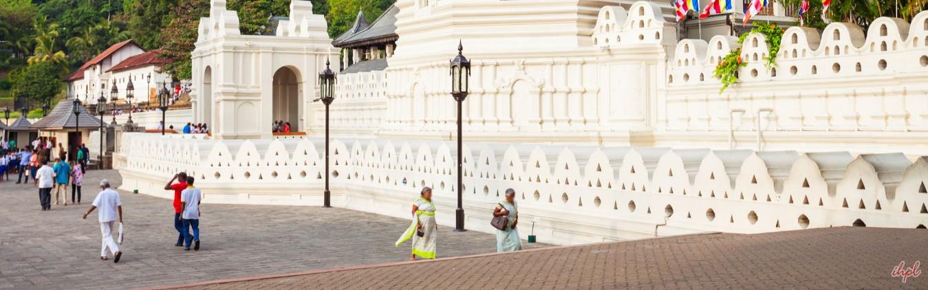 Royal Botanical Gardens Peradeniya in Sri lanka