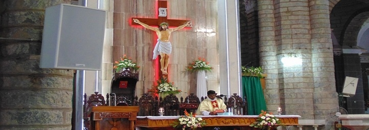 Feast of St. Francis Xavier, festival in goa