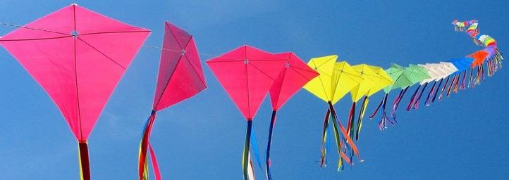 Kite Flying Festival, festival in delhi