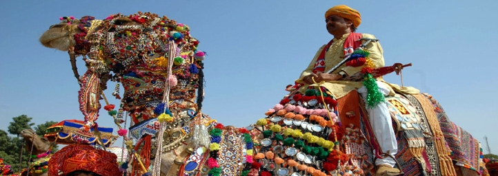 festival in alwar rajasthan
